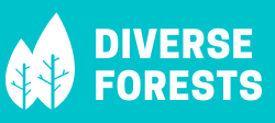 Diverse Forests